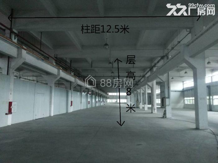 富山工业区6000?12000平方米标准厂房出租