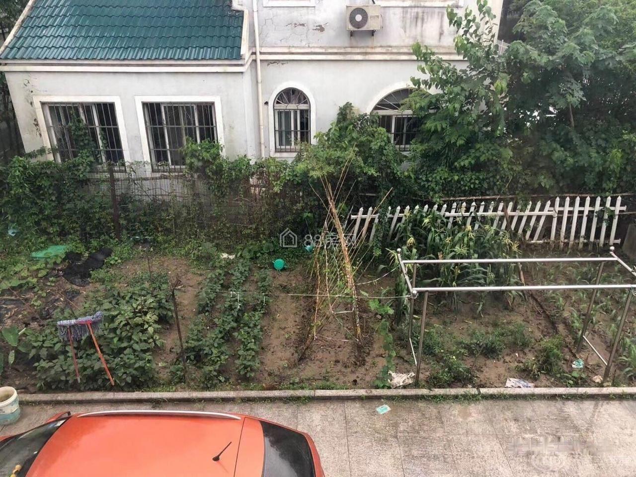 嘉定新城翔方公路独栋别墅整租,合适办公居住房间大气