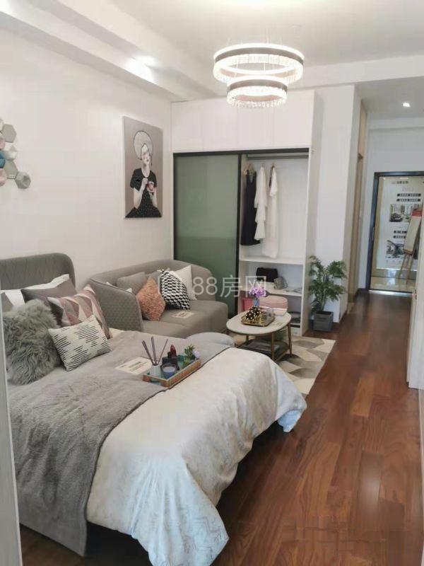 新房:汉阳四新+精装单身公寓+通燃气+有阳台+不限/购